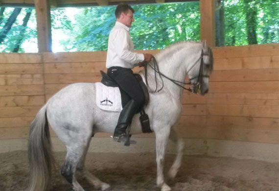 Lezione di postura a cavallo AFEI