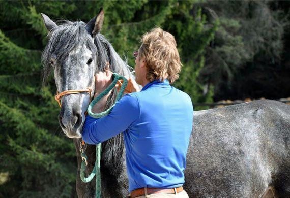 Cavallo con istruttore