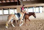 Istruttore con cavalli