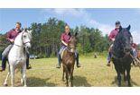 Tre istruttori AFEI a cavallo