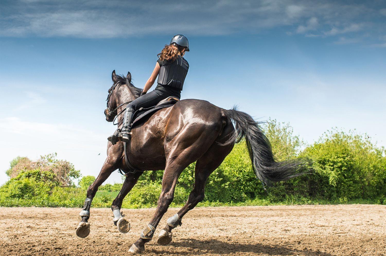 Cavallerizza con cavallo che si allenano